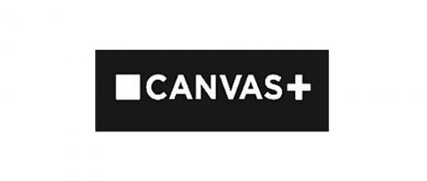 Documentaire op Canvas De Bij Verdwijnt
