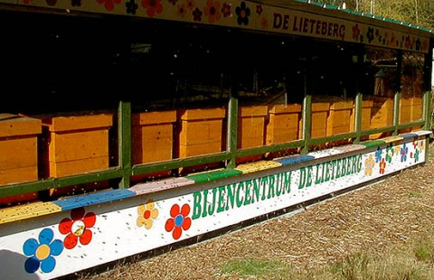 Gezinsdag bijen in Lieteberg op 31 mei.