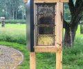 Nieuw: Observatiekast bij het Bijenpaviljoen.